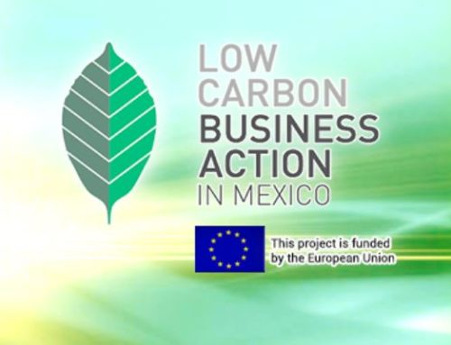 LowCarbon Business Action in Mexico